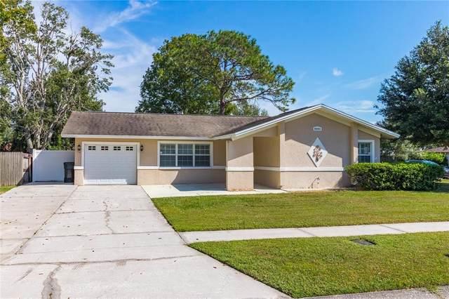 5001 Landsman Avenue, Tampa, FL 33625 (MLS #A4515688) :: CARE - Calhoun & Associates Real Estate