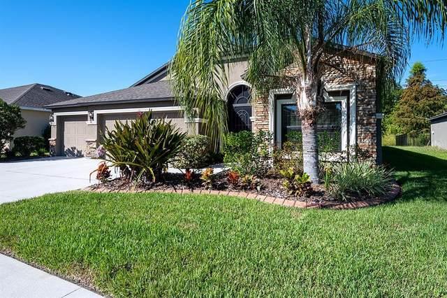 8907 Amen Corner Place, Palmetto, FL 34221 (MLS #A4515781) :: The Kardosh Team