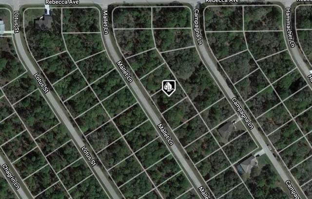 1178 Mallet Lane, Port Charlotte, FL 33953 (MLS #A4515804) :: The Nathan Bangs Group