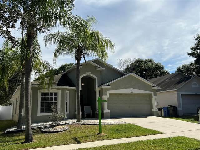 12814 Kings Lake Drive, Gibsonton, FL 33534 (MLS #A4515897) :: Cartwright Realty