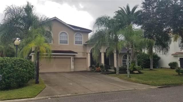 271 Petrel Trail, Bradenton, FL 34212 (MLS #A4516133) :: Future Home Realty