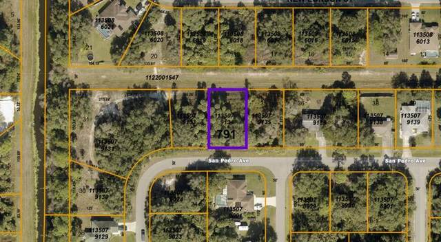 1135079134 San Pedro Avenue, North Port, FL 34288 (MLS #A4516150) :: Rabell Realty Group
