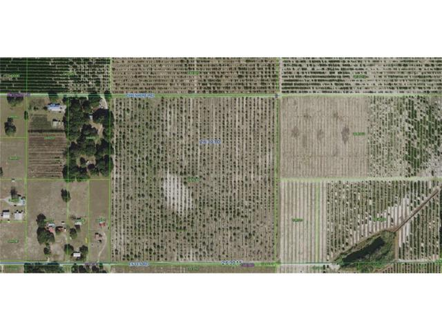 Cheshire Road, Bartow, FL 33830 (MLS #B4700971) :: Dalton Wade Real Estate Group