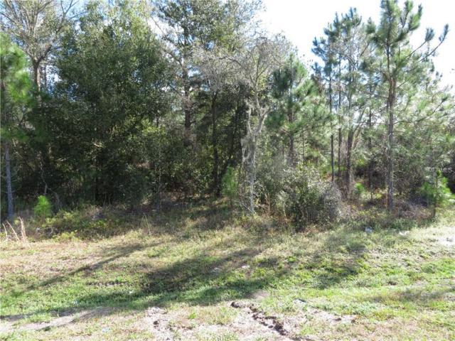 Commonwealth Avenue N, Polk City, FL 33868 (MLS #B4900162) :: Homepride Realty Services