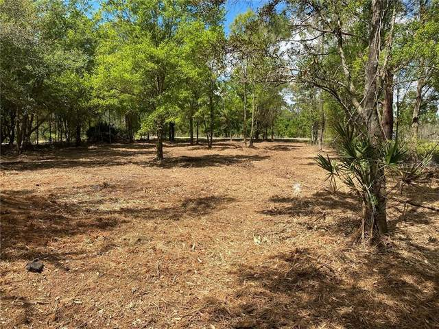 Lake Buffum Road E, Fort Meade, FL 33841 (MLS #B4900583) :: Griffin Group