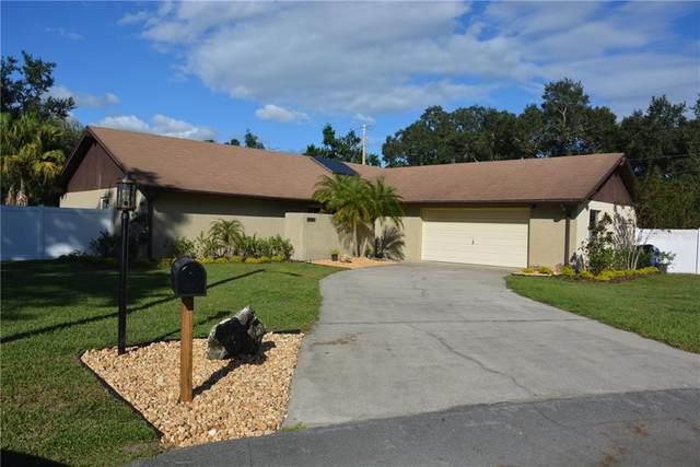 1034 Lamplighter Lane, Lakeland, FL 33813 (MLS #B4900608) :: Frankenstein Home Team
