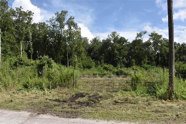 Thornhill Road, Auburndale, FL 33823 (MLS #B4900783) :: Everlane Realty