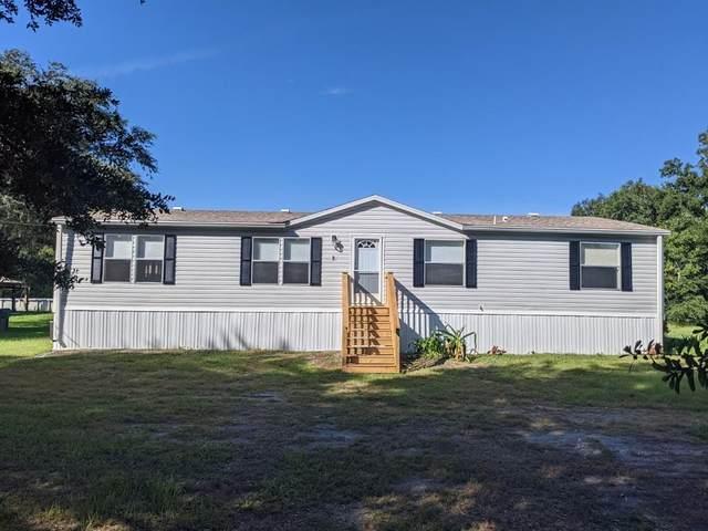 3351 Cypress Trails Drive, Polk City, FL 33868 (MLS #B4900832) :: Burwell Real Estate