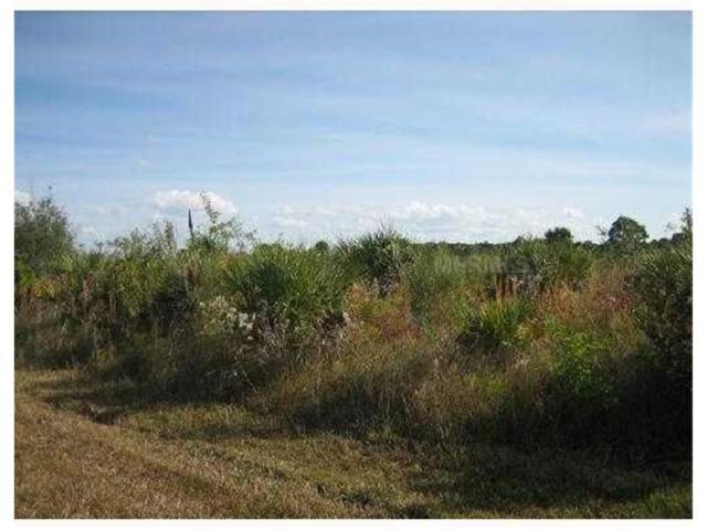 262 Redington Avenue AV, Port Charlotte, FL 33953 (MLS #C6997002) :: Griffin Group