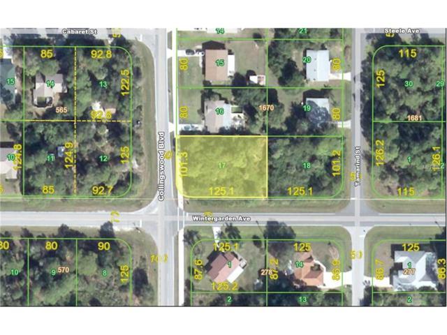 18010 Wintergarden Avenue, Port Charlotte, FL 33948 (MLS #C7221756) :: Premium Properties Real Estate Services