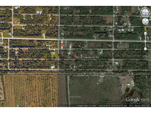 26318 Hapsburg Road, Punta Gorda, FL 33955 (MLS #C7228883) :: Premium Properties Real Estate Services
