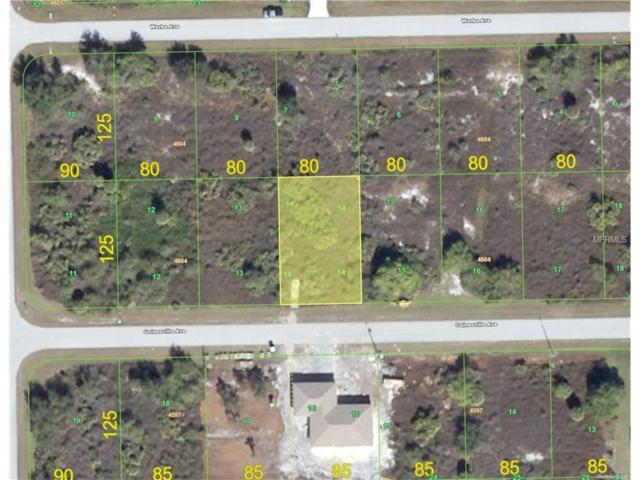 13424 Gainesville Avenue, Port Charlotte, FL 33981 (MLS #C7230309) :: RE/MAX Realtec Group