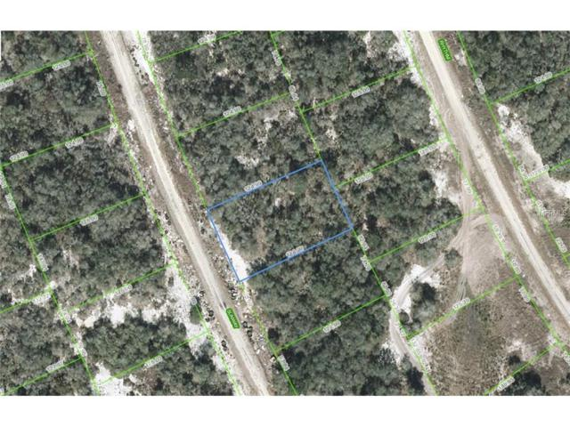 223 Sunway Drive, Lake Placid, FL 33852 (MLS #C7233201) :: The Duncan Duo Team