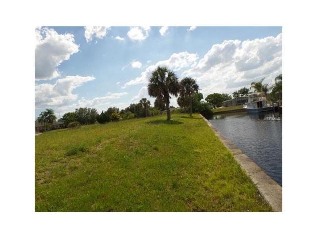 28410 Silver Palm Drive, Punta Gorda, FL 33982 (MLS #C7238013) :: Rabell Realty Group