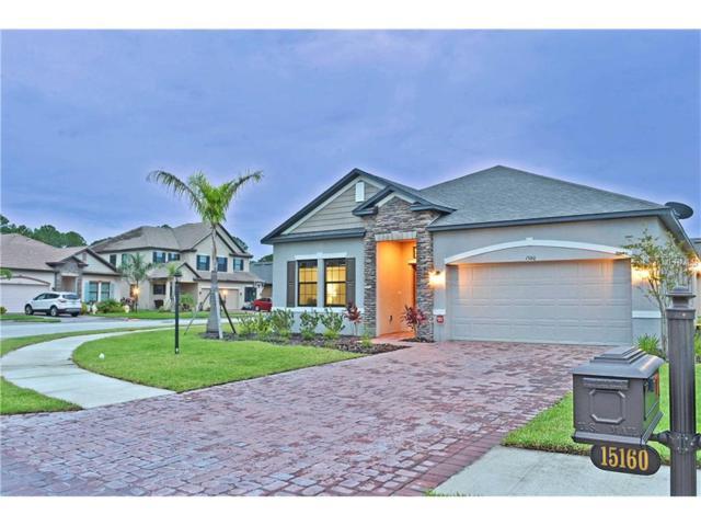 15160 Mille Fiore Boulevard, Port Charlotte, FL 33953 (MLS #C7240852) :: White Sands Realty Group