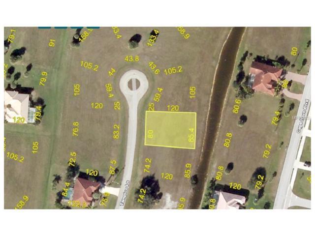 17262 Tampico Lane, Punta Gorda, FL 33955 (MLS #C7241001) :: Baird Realty Group