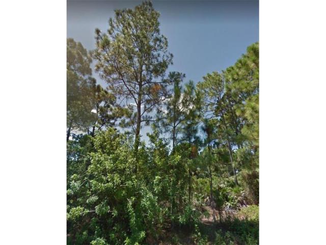 918 Winters Street E, Lehigh Acres, FL 33974 (MLS #C7241178) :: Griffin Group