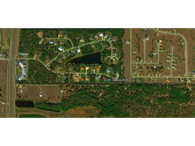 25201 Harborside Boulevard, Punta Gorda, FL 33955 (MLS #C7241854) :: Revolution Real Estate