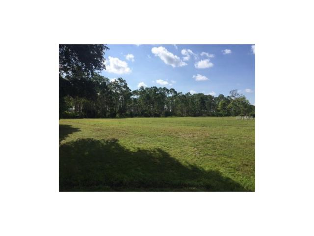 16236 Perdida Court, Punta Gorda, FL 33955 (MLS #C7242495) :: White Sands Realty Group
