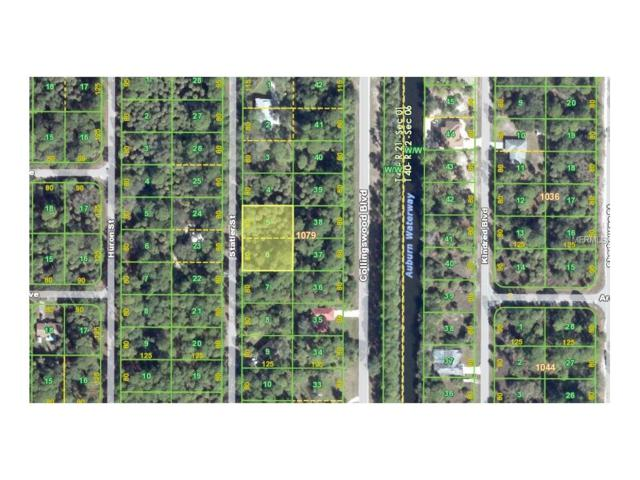 224 Statler Street, Port Charlotte, FL 33954 (MLS #C7242805) :: Griffin Group