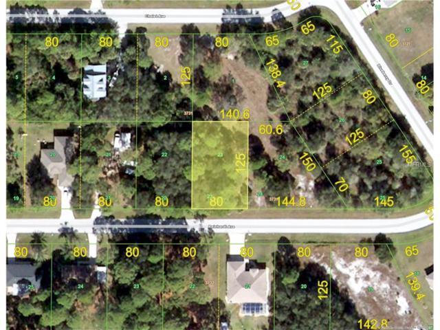 11366 Reinhardt Avenue, Englewood, FL 34224 (MLS #C7242928) :: The BRC Group, LLC