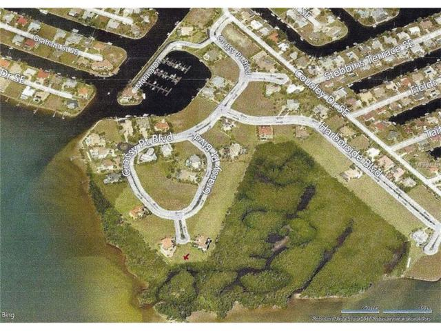 4800 Harbor Point Court, Port Charlotte, FL 33952 (MLS #C7242959) :: The Duncan Duo Team