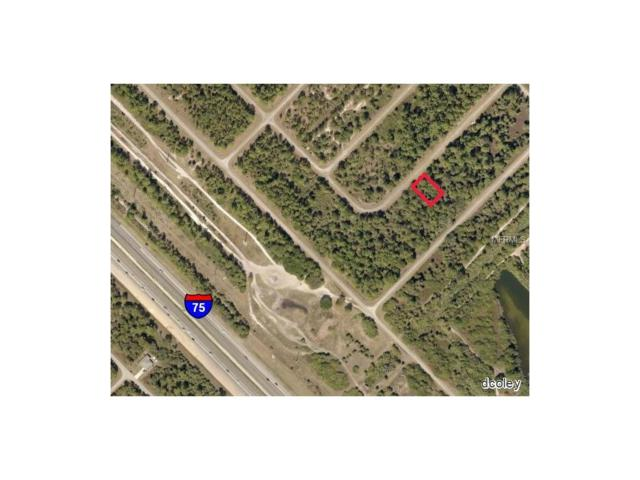 Bignay Road, North Port, FL 34288 (MLS #C7243058) :: Griffin Group