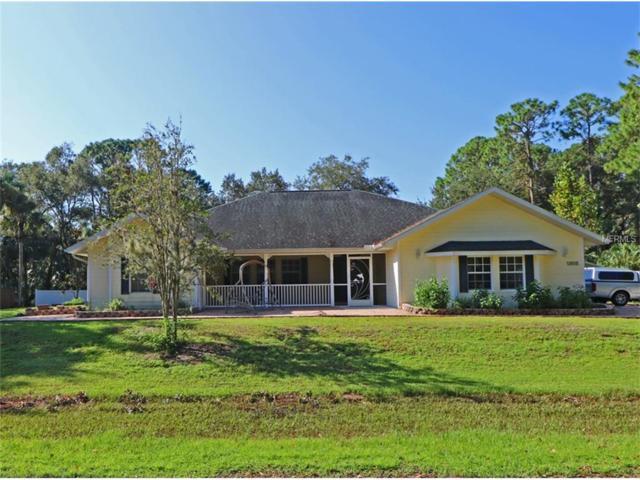13515 Goodrich Avenue, Port Charlotte, FL 33953 (MLS #C7243441) :: Medway Realty