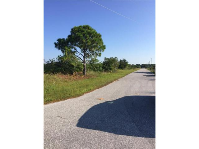 13410 Jeronimo Lane, Port Charlotte, FL 33981 (MLS #C7243458) :: The BRC Group, LLC