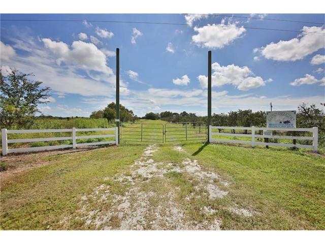 10518 & 10576 SE County Road 763, Arcadia, FL 34266 (MLS #C7243478) :: Delgado Home Team at Keller Williams
