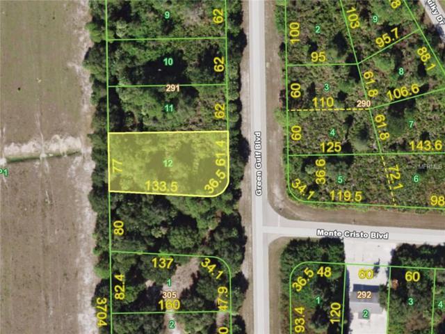 13229 Green Gulf Boulevard, Punta Gorda, FL 33955 (MLS #C7243486) :: Medway Realty