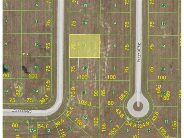 33 Avocado Drive, Placida, FL 33946 (MLS #C7243497) :: Griffin Group