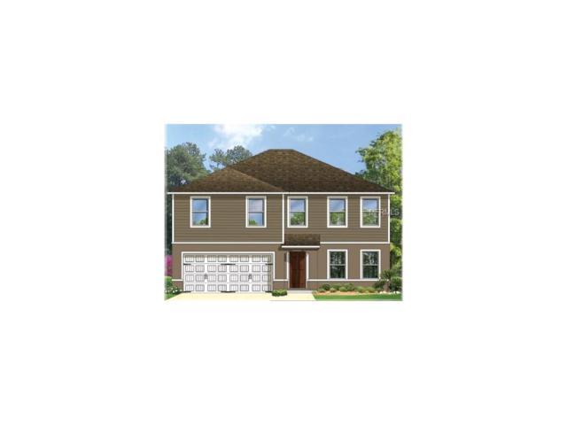 4225 High Ridge Boulevard, Spring Hill, FL 34609 (MLS #C7243543) :: NewHomePrograms.com LLC