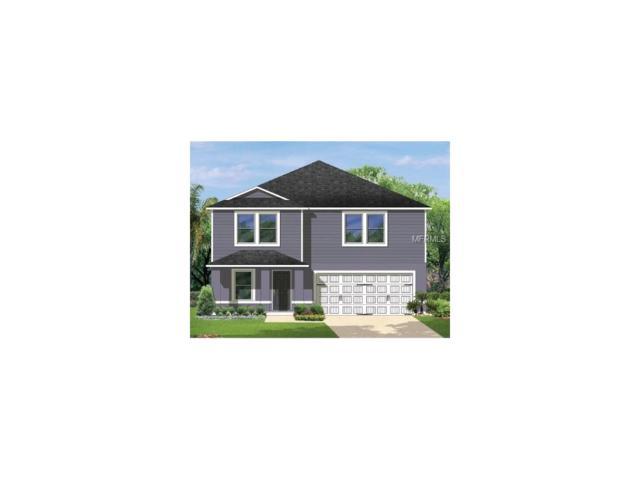 4189 High Ridge Avenue, Spring Hill, FL 34609 (MLS #C7243545) :: NewHomePrograms.com LLC