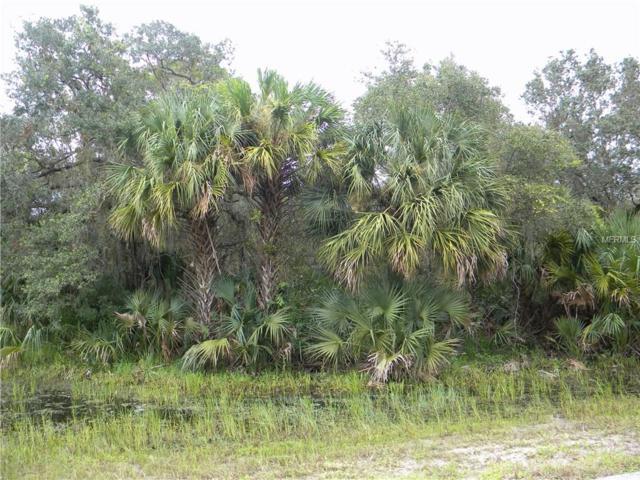16424 Ester Avenue, Port Charlotte, FL 33948 (MLS #C7243669) :: The Duncan Duo Team