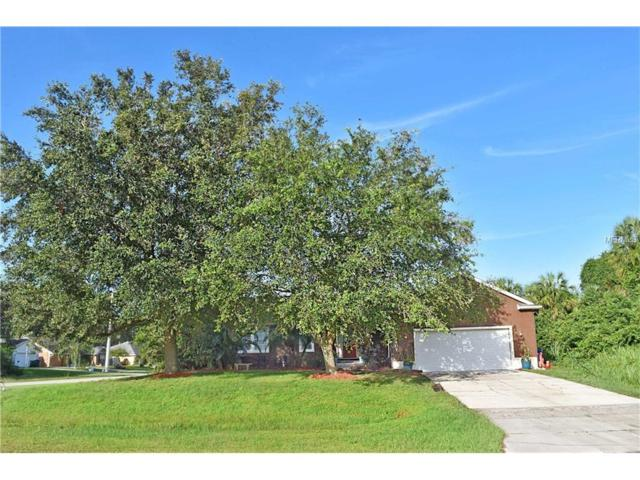 4407 N Chamberlain Boulevard, North Port, FL 34286 (MLS #C7244679) :: Griffin Group