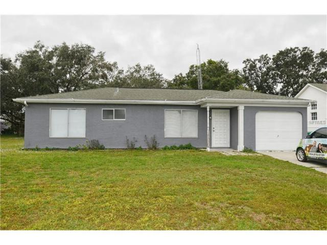1207 Ramsdel Street, Port Charlotte, FL 33952 (MLS #C7245946) :: Cartwright Realty