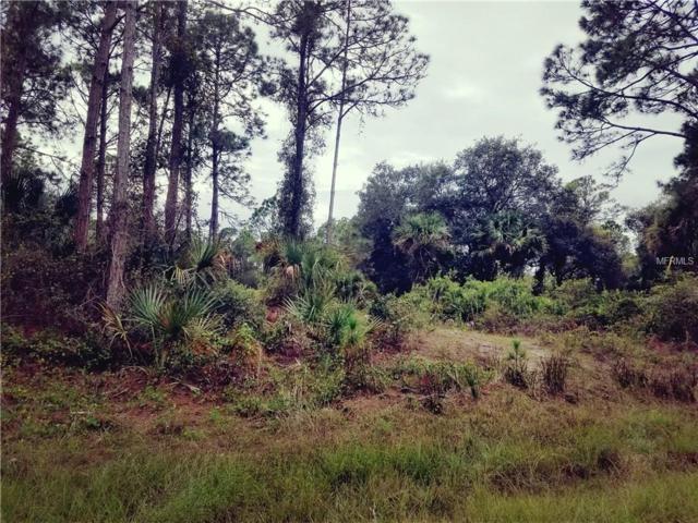 Salazar Avenue, North Port, FL 34291 (MLS #C7246007) :: Griffin Group