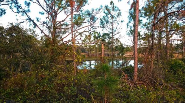 427 Blackbird Avenue, Lake Placid, FL 33852 (MLS #C7246916) :: Griffin Group