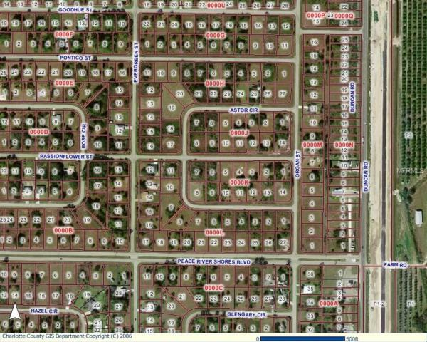 29441 Passion Flower Street, Punta Gorda, FL 33982 (MLS #C7247134) :: Premium Properties Real Estate Services