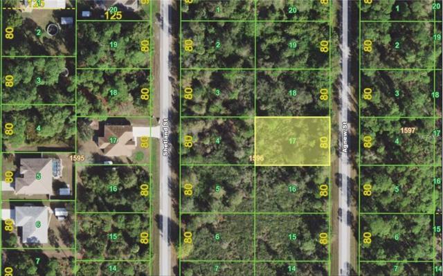 1181 Agnew Street, Port Charlotte, FL 33980 (MLS #C7247166) :: Griffin Group