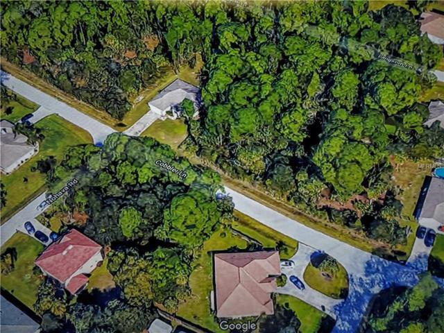 Cobbler Lane, North Port, FL 34286 (MLS #C7247528) :: The Duncan Duo Team