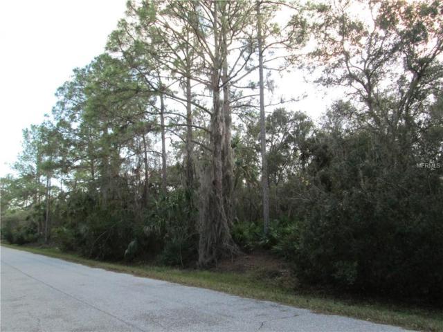 1185 Hammacher Lane, Port Charlotte, FL 33953 (MLS #C7248653) :: Premium Properties Real Estate Services