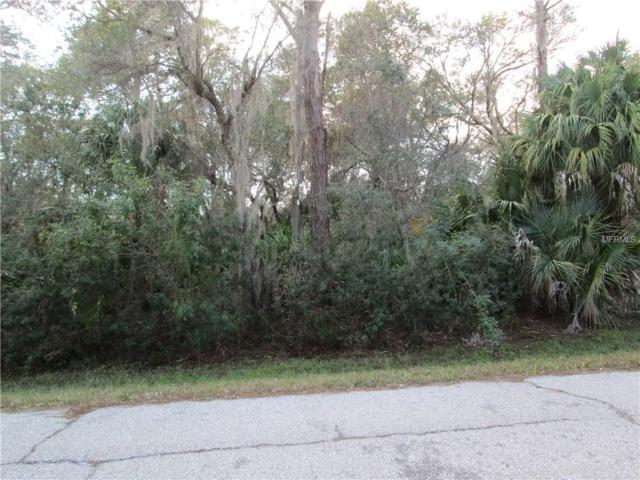 1343 Hammacher Lane, Port Charlotte, FL 33953 (MLS #C7248654) :: Premium Properties Real Estate Services