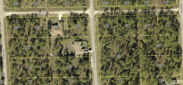 3206 E 22ND Street, Alva, FL 33920 (MLS #C7248660) :: Premium Properties Real Estate Services