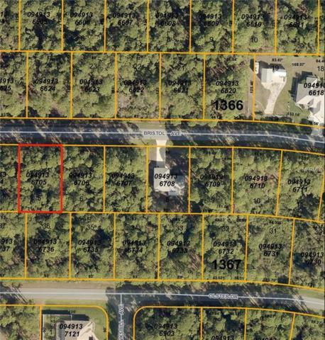 Bristol Avenue, North Port, FL 34291 (MLS #C7248923) :: Griffin Group