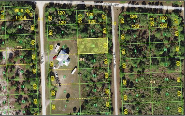 13153 Caliente Drive, Punta Gorda, FL 33955 (MLS #C7248936) :: Griffin Group
