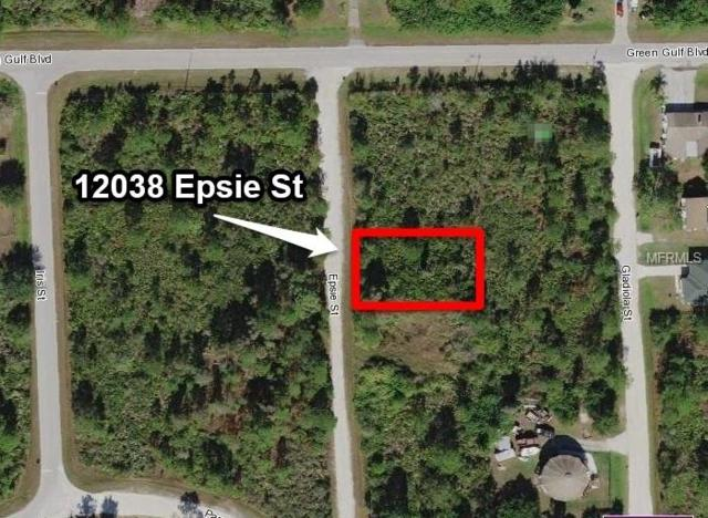 12038 Epsie Street, Punta Gorda, FL 33955 (MLS #C7249065) :: Premium Properties Real Estate Services