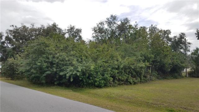1161 Guild Street, Port Charlotte, FL 33952 (MLS #C7249099) :: The Lockhart Team