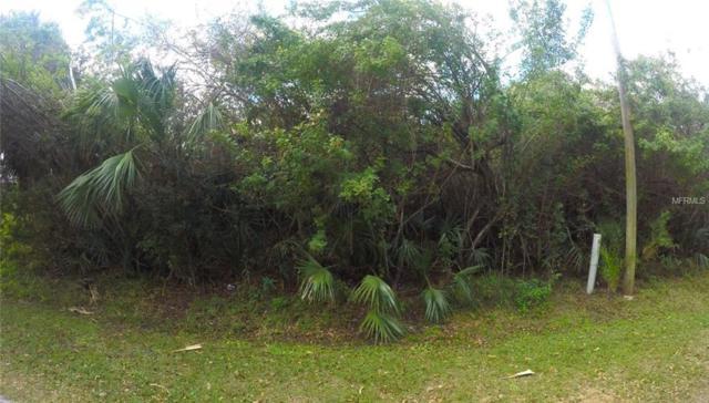 63 Ramblewood Street, Port Charlotte, FL 33953 (MLS #C7249140) :: Godwin Realty Group